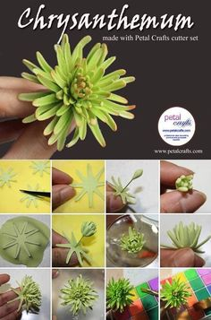 Мои закладки - -CKC-maybe air dry clay sub. Sugar Paste Flowers, Icing Flowers, Fondant Flowers, Edible Flowers, Diy Flowers, Paper Flowers, Fondant Bow, Fondant Cakes, Polymer Clay Flowers