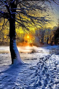 Winter Sunset, Belgium