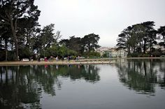 BEAUTEOUS LAKE IN THE WESTERN END OF THE PARK.  spreckels+lake+golden+gate+park | spreckels tai chi at spreckels lake in golden gate park