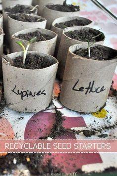 15 Different Uses for Toilet Paper Rolls | Gardening | Pinterest ...