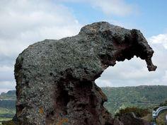 Roccia dell'elefante - Elephant Rock - Castelsardo - Sardinien Sardegna