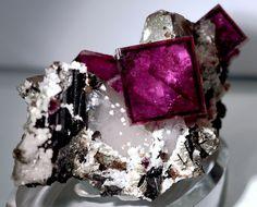 Fluorite, Quartz, and Wolframite
