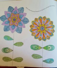 Flowers From Animal Kingdom Coloring Book