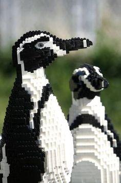 Penguins made of Legos.these are so adorable! Penguin Life, Penguin Party, All About Penguins, Cute Penguins, Types Of Animals, Cute Animals, Penguin Pictures, Legos, Polar Bear