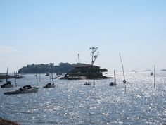 Discover Thimble Islands in Connecticut - Traveling Mom