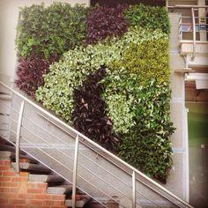 Jardines verticales, Living walls