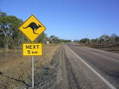 Along Bruce Highway. A nice change from the caution deer road signs I see around my home :)