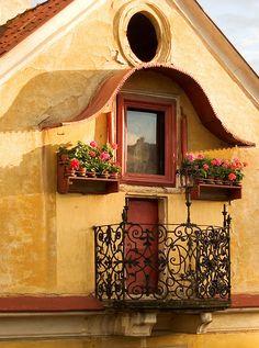 Balcony Flowers in Prague by David Blaikie