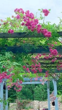 Terrace Garden, Garden Planters, Garden Art, Flower Landscape, Garden Landscape Design, Beautiful Gardens, Beautiful Flowers, Serenity Garden, Backyard Greenhouse