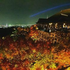 Instagram【hs_hank】さんの写真をピンしています。 《真懷念秋天的清水寺 美麗的紅葉配老舊的木造建築 涼爽的溫度裡看厲害的夜景 除了人滿了點 一切都很棒  #kiyomizudera #maple #nightview #redleaf #autumn #landscape #wonderlust #travel #beautiful #kyoto #japan  #清水寺 #清水の舞台 #楓葉 #紅葉 #秋天 #夜間拝観 #夜景 #厲害 #景點 #京都 #日本 #旅行》