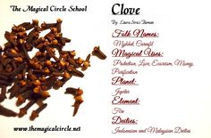 Clove Magical Properties - The Magical Circle School - www.themagicalcircle.net