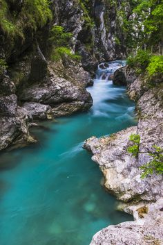 size: Photographic Print: Tolminka River, Tolmin Gorges, Triglav National Park (Triglavski Narodni Park), Slovenia, Europe by Matthew Williams-Ellis : Entertainment Nature Images, Nature Photos, Rio, William Ellis, Fantasy Forest, Exotic Places, Beautiful Places In The World, Heaven On Earth, Vacation Spots