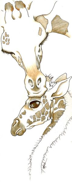Giraffe by ~mugmoni on deviantART Giraffe Drawing, Giraffe Art, Baby Animals, Cute Animals, Baby Giraffes, Wild Animals, Animal Drawings, Art Drawings, Giraffe Tattoos