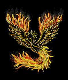 Coaster Design, Coaster Set, Meaning Of Phoenix, Ancient Protection Symbols, Animal Reiki, Good Luck Symbols, Rise From The Ashes, Phoenix Bird, Phoenix Vogel