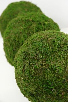 4.00 SALE PRICE! For a whimsical touch of green, fashion decorations out of these natural moss balls by pinning preserved flowers or crystals to them, placin...