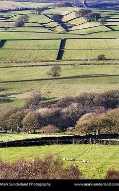 Nidderdale from Brimham Rocks near Summerbridge North Yorkshire, UK England by Mark Sunderland, via Flickr