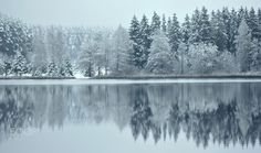 Snowy reflections by RE~gi~NA