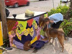 Jovem moradora de Pelotas cria alimentador para cães abandonados a partir de freezer