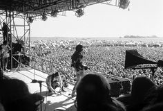 An image taken from Hendrix's last concert on September 6, 1970 at the Open Air Love & Peace Festival in Fehmarn, Germany. Hendrix would die a few weeks later at the age of 27.