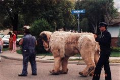 Behind the scenes of The Sandlot, 1993