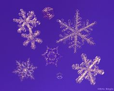 18 perfect snowflakes [Photos] | MNN - Mother Nature Network