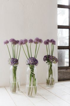 SO SCHÖNE BLUMEN GIBT'S! Kramer & Kramer bietet ein täglich frisches Sortiment ausgewählter Schnittblumen. Für Hochzeiten und alle denkbaren Feiern, die nach Blumenschmuck verlangen, stellen wir aufregende und ungewöhnliche Arrangements zusammen. Fad und gewöhnlich gibt's auch woanders. Glass Vase, Home Decor, Giving Flowers, Cut Flowers, Floral Headdress, Beautiful Flowers, Lawn And Garden, Nice Asses, Decoration Home