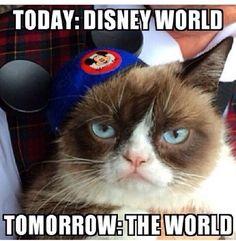 Today #Disney World. Tomorrow the world.