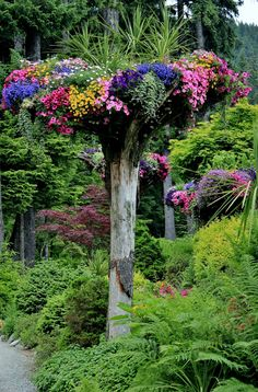 Flower tower at the Glacier Gardens Rainforest Adventure, Juneau, Alaska...