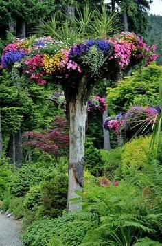 Flower tower at the Glacier Gardens Rainforest Adventure, Juneau, Alaska...