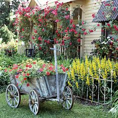 This small front garden in Minnesota graciously welcomes visitors with a successful mix of container plants and overflowing beds. We were enchanted by the antique goat cart that doubles as an eye-catching centerpiece and a unique planter for Red Wave petunias and yellow African daisies. Next to the cart, lysimachia adds brilliant color behind a weathered iron fence.    Test Garden Tip: Recreate this look by mixing antique garden accessories with a salvaged section of fence or edging (or even a