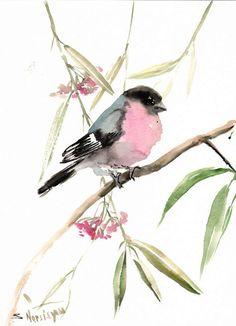 Bullfinch, original watercolor painting, 12 X 9 in, pink black bird painting wall art, wildlife