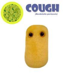 Cough Bordetella pertussis Plush Giant Microbe