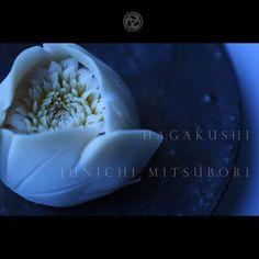 """2,453 次赞、 14 条评论 - junichi mitsubori (@junichi_mitsubori) 在 Instagram 发布:""""#一日一菓 #菓道 「 #牡丹 」 #wagashi of the Day #Camellia #煉切 製 #玉華寂菓  本日は牡丹です。 昨日アップ出来なかったので、 二日分連投失礼します。…"""""""