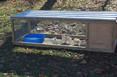 chicken breeding pen | Please pardon our dust while this site is under construction...