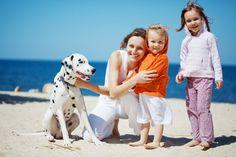 urlaub mit hund kroatien haustier