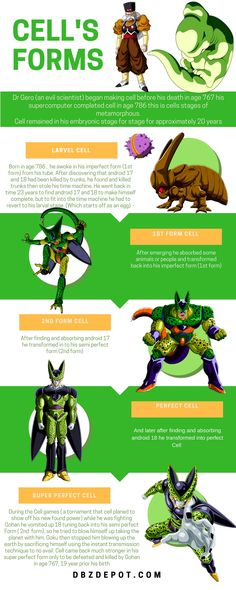Dragon Ball Z DBZ inforgraphic showing Cell's forms.