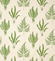 Woodland Ferns Fabric by Sanderson | Jane Clayton