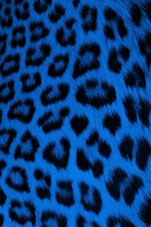 cute drawings of animals Cheetah Print Wallpaper, Leopard Print Background, Black Phone Wallpaper, Graphic Wallpaper, Aesthetic Iphone Wallpaper, Cool Wallpaper, Blue Wallpapers, Pretty Wallpapers, Wallpaper Backgrounds