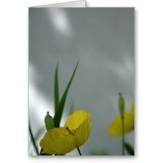 Poppies & shade (6) card