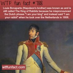 The King of Rabbits - WTF fun facts