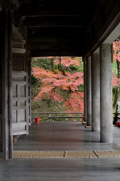 Shorin-in (勝林院) Temple in Ohara, north of Kyoto. One of my favorite places in Japan, especially on a rainy day.