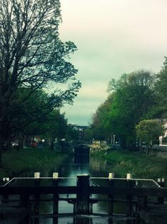 The Grand Canal, one of the many things I miss about living in Ireland!