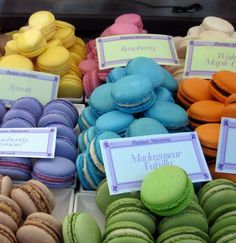 Macarons display - I like all of the different flavors.