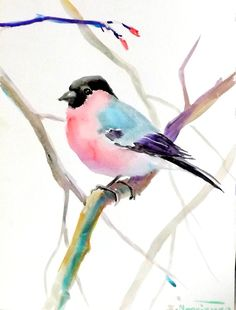 Bullfinch original watercolor painting 12 X 9 in by ORIGINALONLY, $24.00