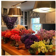 Flowers for the home - Tory Burch