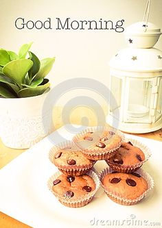 Chocolate chips muffins decorated with tiny tree pot and lamp or lantern on wooden spruce desk with pastel retro filter effect by Mutita Narkmauang, via Dreamstime