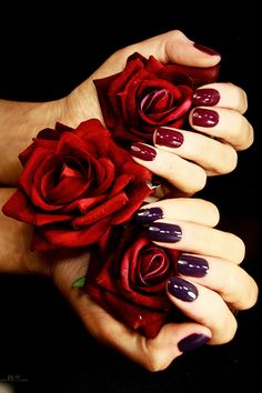 Nail Art Photography for Filthy Gorgeous London. Beautiful Roses, Beautiful Hands, Hand Photography, Dull Hair, Love Rose, Red Paint, Red Aesthetic, Shades Of Red, Flower Art