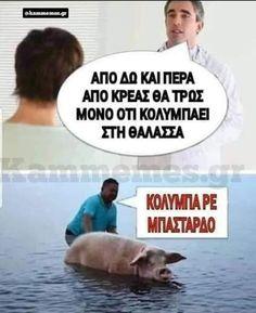 Funny Greek Quotes, Funny Jokes, Husky Jokes, Hilarious Jokes