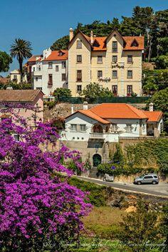 Sintra, Portugal | Sintra es una villa portuguesa del distrito de Lisboa, región de Lisboa y subregión de Grande Lisboa. El municipio (consejo) de Sintra tiene dos ciudades: Agualva-Cacem, con cerca de 101.000 habitantes, y Queluz, con 111.424 habitantes. La ciudad fue declarada Patrimonio de la Humanidad por la Unesco en 1995.
