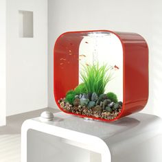 acuario biOrb life